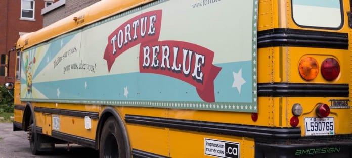 Tortue Berlue