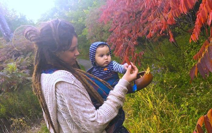 automne-bois