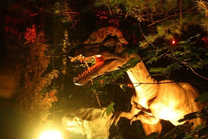Dinozoo Noctambule