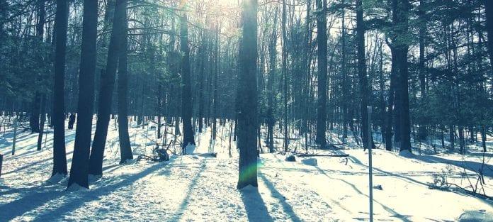 hiver au chaud