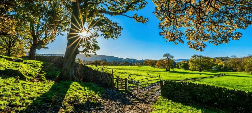 L'été en campagne ou passer de 100 à 10km/h - Marginale et heureuse